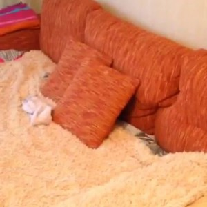 Псих в подушках