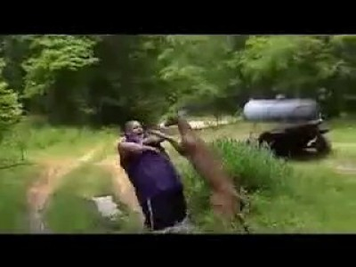 Нападение оленя