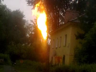 адский факел в омке