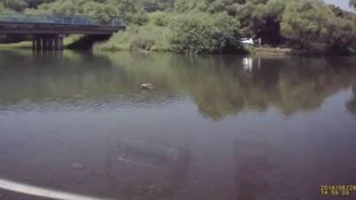 Вылетел с моста в реку 29.06.14г