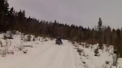 Snowmobiler moose attack in Jackman, Maine