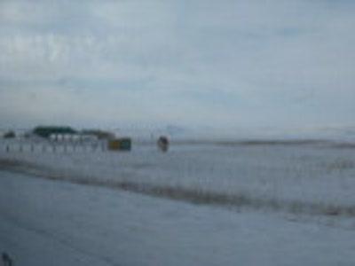 Беле зимой