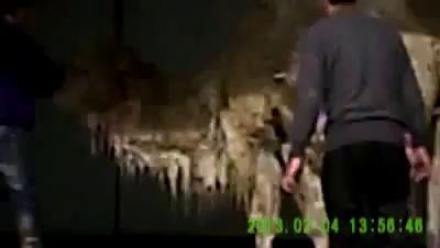 Помывка верблюда на автомойке .