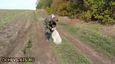 Мужики спасли собаку