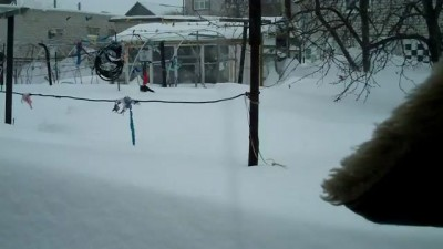 Снегопад в Камышине. Кошка и сугроб!!!