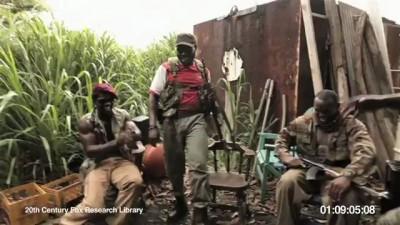 Обезьяна и AK-47