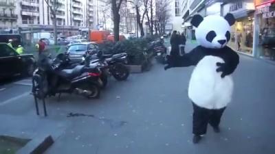 Панда валит с ног особой уличной магией!