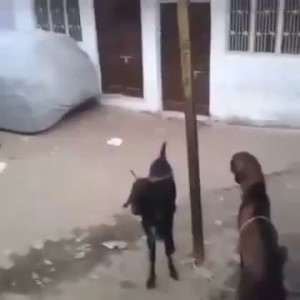 Неожиданное нападение
