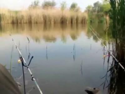 Неудачная рыбалка в пятницу 13-го
