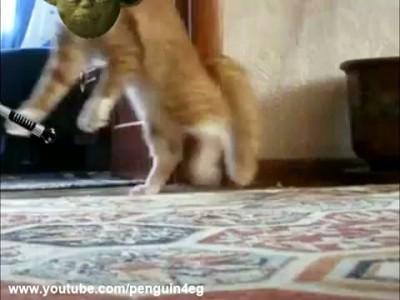 Кот ушел красиво (new version) Thriller Cat