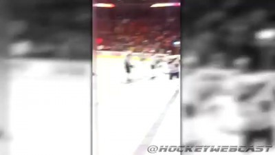 Top 5 NHL Players Taunting Fan Moments (HD)