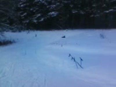 Супер лыжники