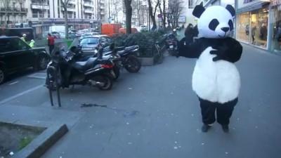 Засмотрелась на панду .