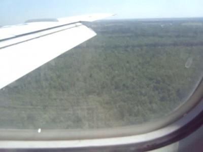 Посадка Домодедово