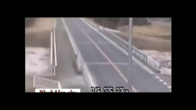 Японцы пытаются убежать от цунами .