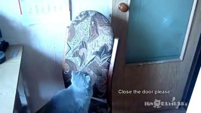 Закрой дверь, пожалуйста.