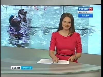 """Нерпы Иркутска представят военно-патриотическую программу, """"Вести-Иркутск"""""""
