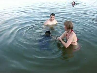 Енот купается