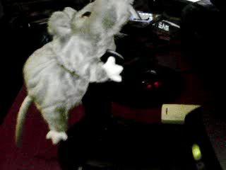 Плюшевая мышь + джойстик