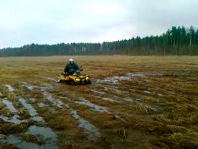 Квадроцикл в болоте