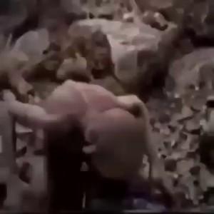 малышева