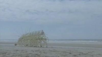 strandbeest evolution