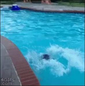 Смотри внучек , ща дедуля научит как нырять