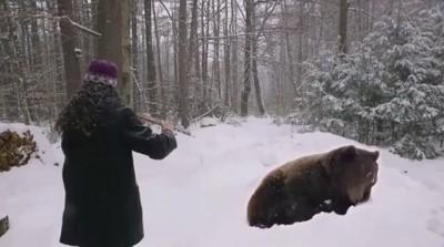 Убаюкивает медведя