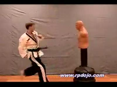 Dynamic Kicking - Pecoraro's Academy Of Martial Arts
