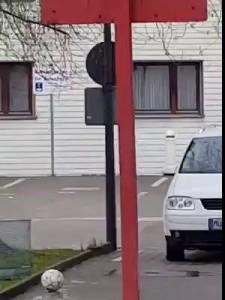 Неграм в Германии можно все.