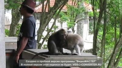 Так и живут)))