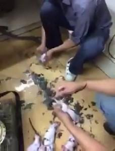 """Вкуснятина"" в Азии"