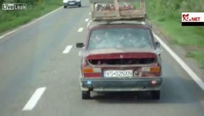 Птичий дворик в автомобиле