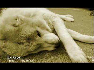 "Le Gor - ""Зверь"""