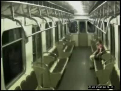 Кошки в московском метро