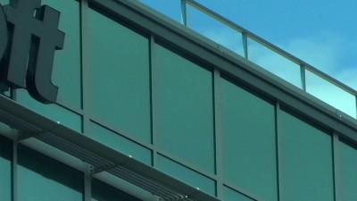 Гриф над офисом Microsoft