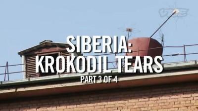 Сибирь: Крокодильи слёзы (часть 3)