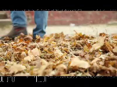 Короткометражный фильм на Студентскую осень 2010