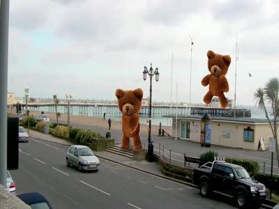 Безумные медведи (by cyriak)