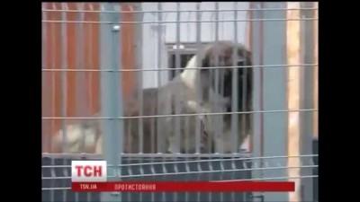 Янукович бежал!