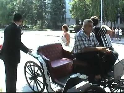 Свадебные кони