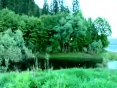 Витязь