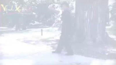 Wing Chun Kung Fu 永春 Kune Sao and Seung Kuen