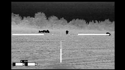 REAP-IR Thermal Night Hunting