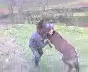 Борец с ослом