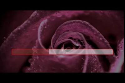Цветы - Звёздочка моя ясная (караоке)