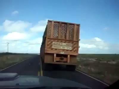 Автопоезд для перевозки сахарного тростника .