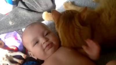 Счастье - Любовь кота и младенца!!! /2014prikol
