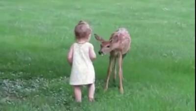 Look Mom, it's Bambi