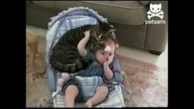 Кот и ребёнок